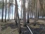 Pożary z 19 kwietnia